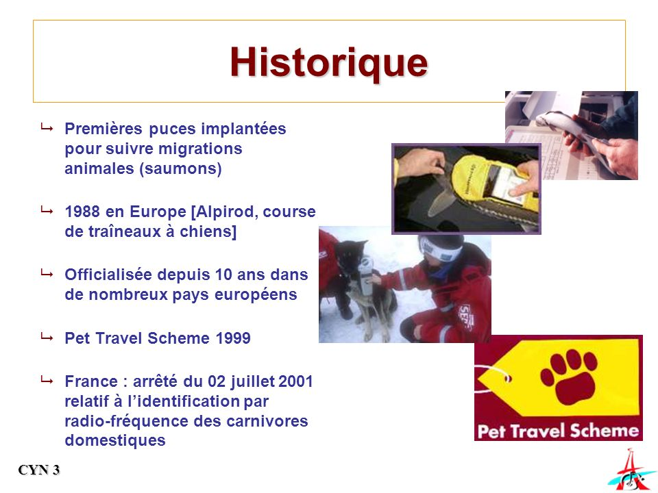 Historique Premières puces implantées pour suivre migrations animales (saumons) 1988 en Europe [Alpirod, course de traîneaux à chiens]